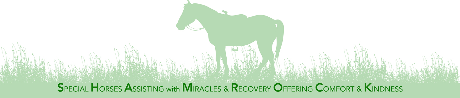 Special Horses Assisting with Miracles & Recovery Offering Comfort & Kindness